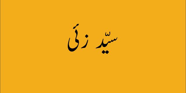 sayed zai